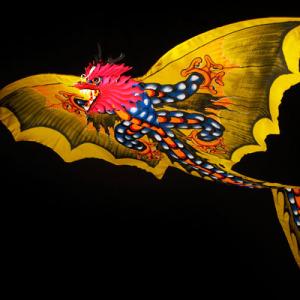 Vládci větru - 3D létajíci draci rozpětí 196 - 400 cm
